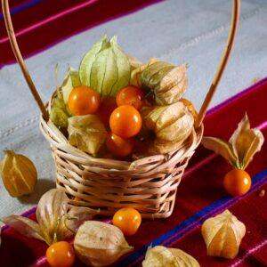 produccion-frutas-pampa-concordia-10